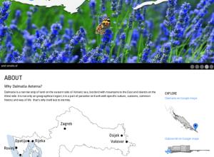 Dalmatia aeterna web
