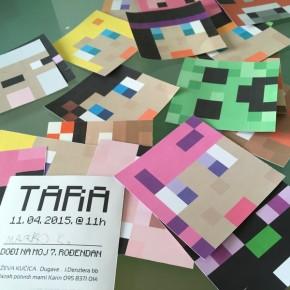 Minecraft-Tara-2015-05