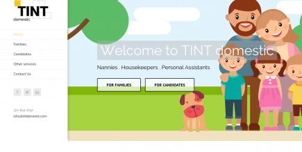 TINTdomestic web